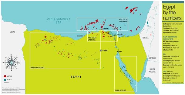 oil info